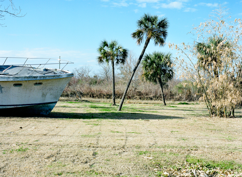 (photo by Elena Ricci of Southerly Gold- Plaquemines Parish, 2013, archival digital print, medium format)